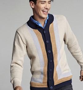 Heren vest