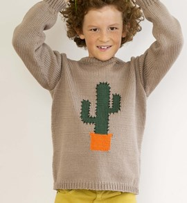 Trui met cactus