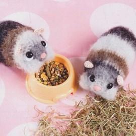 Hamster broertjes