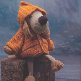 Hond met regenjas