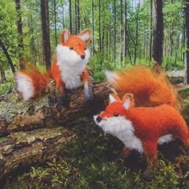 2 vossen broertjes spelen graag in het ....