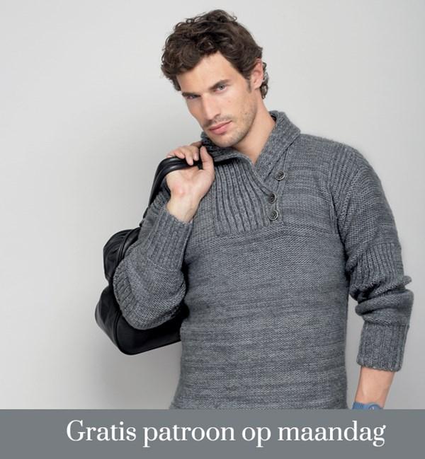 Breipatroon trui
