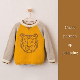 Gratis patroon - Breipatroon jongenstrui
